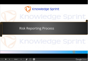 Risk Reporting Process