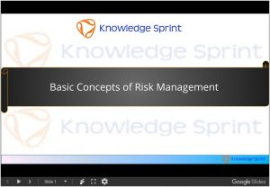 Basic Concepts of Risk Management