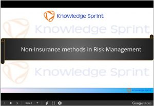 Non-Insurance methods in Risk Management